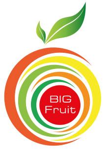 Ontwerp_Logo_Alkmaar