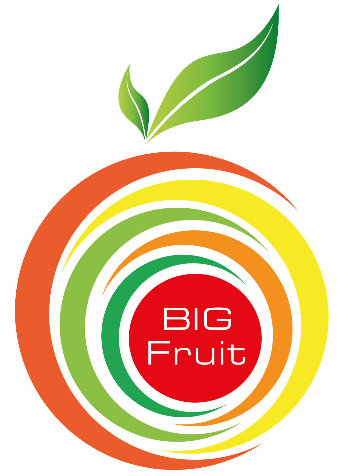 BigFruit_logo_ReclamebureauSchermerAlkmaar