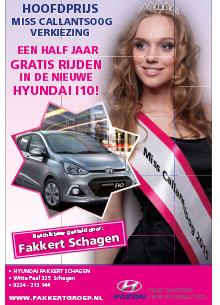 Hyundai Fakkert