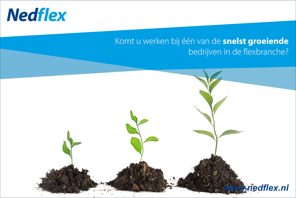 NedFlex_creatieve_social_media_content2